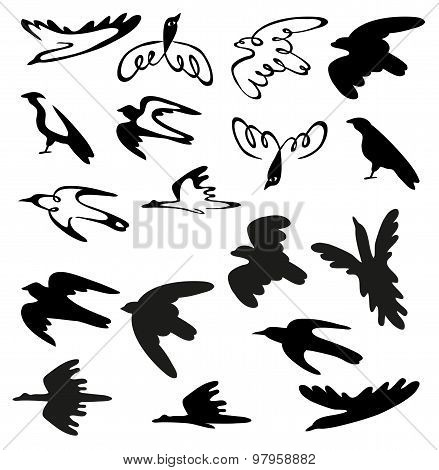 Stylized Birds And Silhouettes