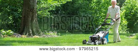 Old Gardener With Lawnmower