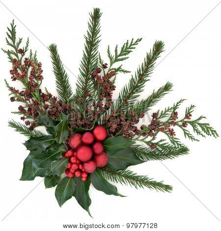 Christmas flora with red baubles, holly, ivy, fir and winter greenery over white background.