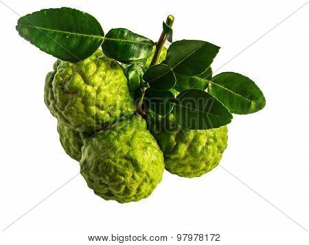 Bergamot Isolate White Background With Clippinpath