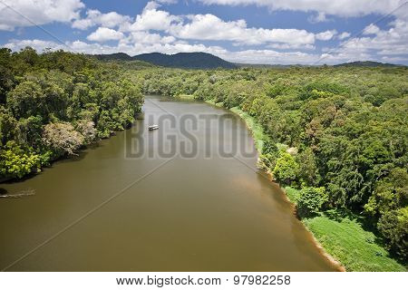 River in rainforest