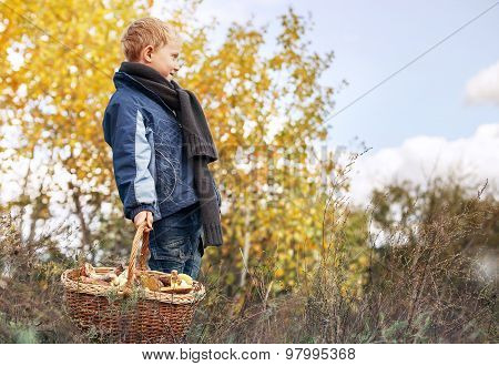 Boy In Autumn Forest With Ful Basket Of Mushrooms