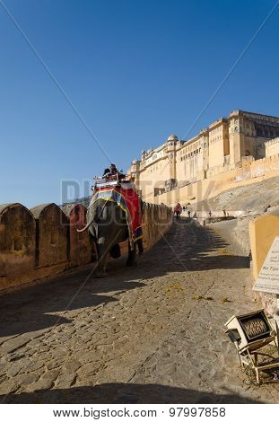 Jaipur, India - December 29, 2014: Decorated Elephant At Amber Fort In Jaipur