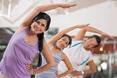 Постер, плакат: Stretching Exercises