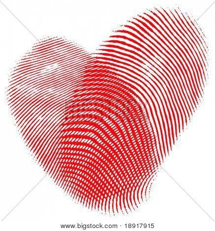 Two fingerprints forming a heart, romantic concept, isolated over white.