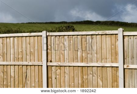 Fence, Neighbors