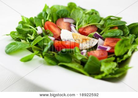 Salad with spinach mustard