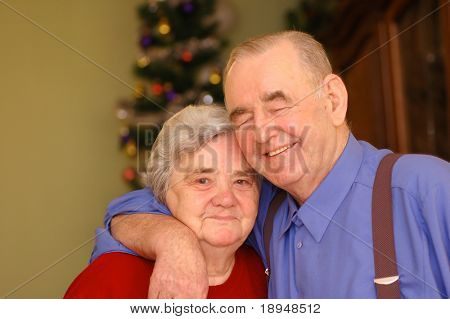 Elderly happy couple in Christmas scenery
