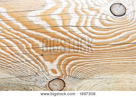 Dried Up Wood