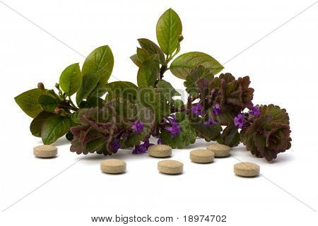 herbal medicine isolated on white background close up