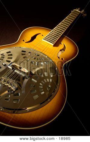 Rare Acoustic Guitar