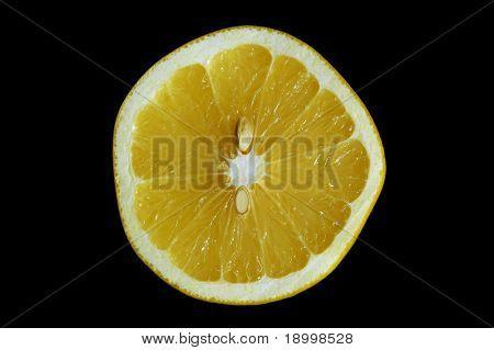 Crossection of Grapefruit