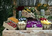 stock photo of farmers market vegetables  - Fresh Vegetable Produce Stand in Farmers Market Showing Healthy Food - JPG