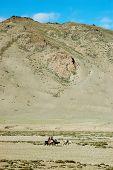Постер, плакат: Гималайский кочевников населения по дороге Лех Манальское Ладакх Индия