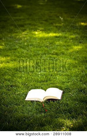 Open book on green background