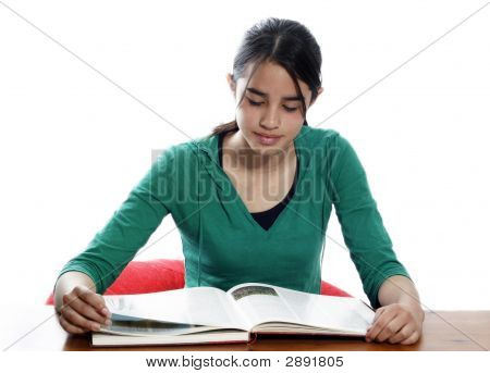 Young Girl Reading And Studying