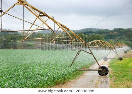Sistema de pivote de riego modernos trabajando en una granja