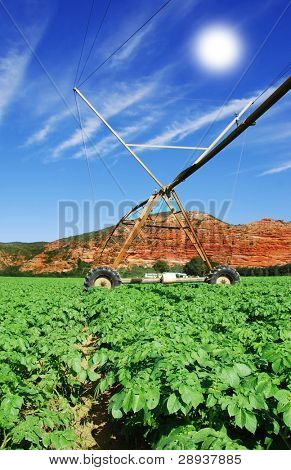 a Modern irrigation system in a potato field