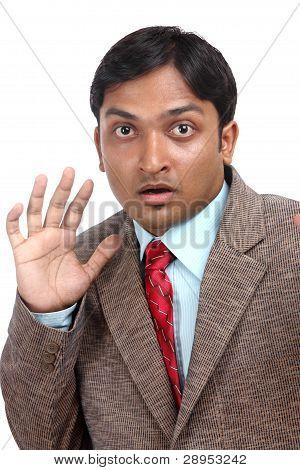 Indian business man portrait