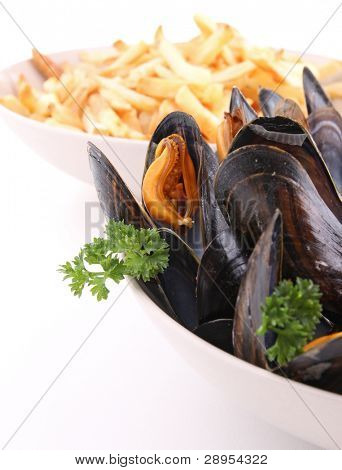 mussel and parley