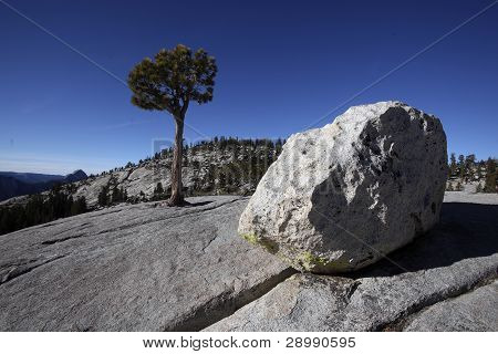 Erratic Boulders, Yosemite National Park
