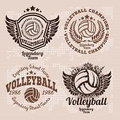 Set Badges Logos Volleyball Teams And Tournaments, Championships Volleyball. poster
