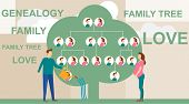 Family Tree In Modern Flat Illustration. A Man Is Watering A Family Tree With Photos Of Relatives, A poster