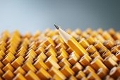 stock photo of blunt  - One sharpened pencil standing out from the blunt ones - JPG