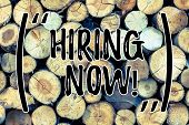 Text Sign Showing Hiring Now. Conceptual Photo Workforce Wanted Employees Recruitment Wooden Backgro poster