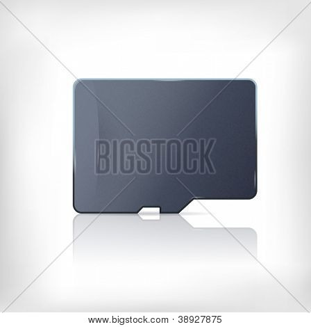 Micro sd card. Flash memory card