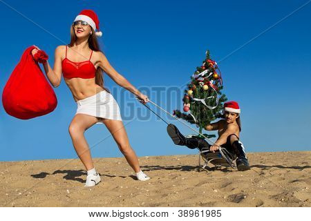 Sexy Santa helper  pulling Santa on a sled with Christmas tree at the beach.  (concept: Tropical winter fun)