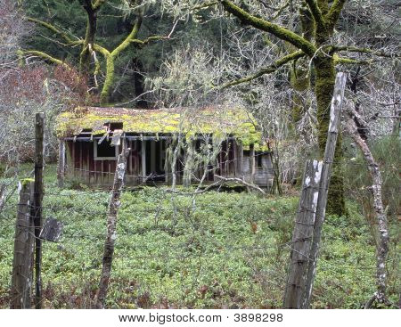 Abandoned Country Shack