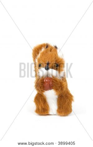 Cute Plushy Squirrel In Front Of A White Background