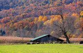 Farm lands in Appalachian mountains of West Virginia