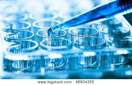 microbiological pipette in the genetic laboratory