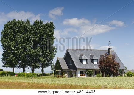 House On Blue Sky With Trees