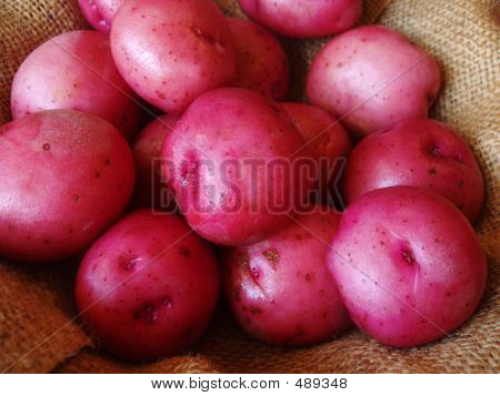 Red Potatoes On Burlap