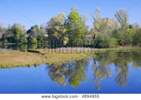 Rio americano lagoa com reflexão 3