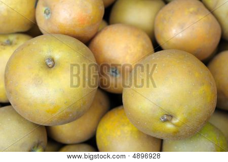 Egremont Russet postre manzanas