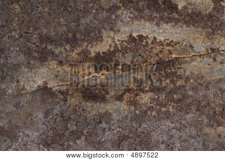 Close-up Of Old Wood Background Texture