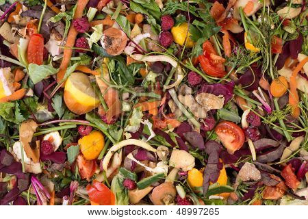 Pile of composting natural waste