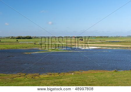 protected bird lake on Dutch wadden island Texel