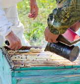 stock photo of beehive  - two beekeepers smoke beehive before they take out honeycomb frames - JPG