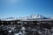 foto of denali national park  - A dusting of snow over the fields and mountains of Denali National Park - JPG