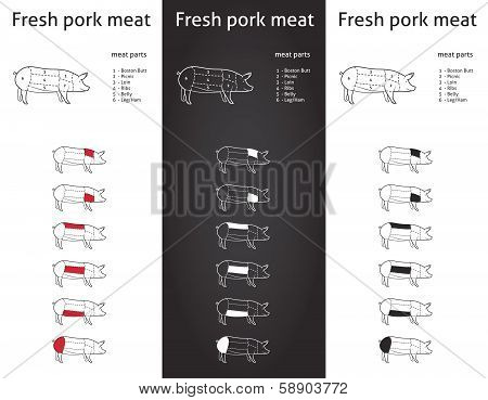 Fresh Pork meat parts