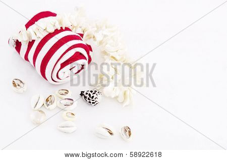 Nautical theme with shell