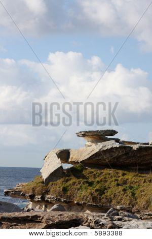 Coastal Rock Outcrop