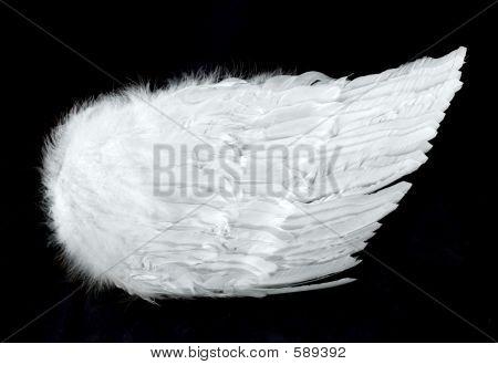 Vista lateral aislado en negro de alas de Ángel