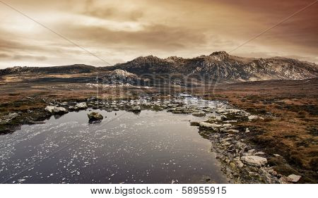Gorgeous wild landscape photo