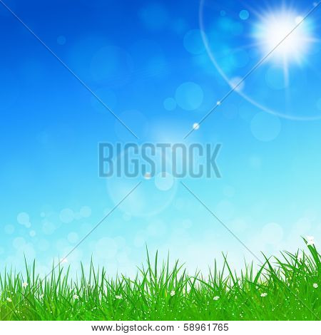 Spring Blue Background
